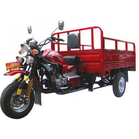 xe ba banh cho hang WS 003